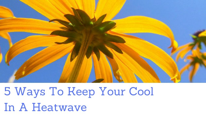 Keep Your Cool in a Heatwave (1)