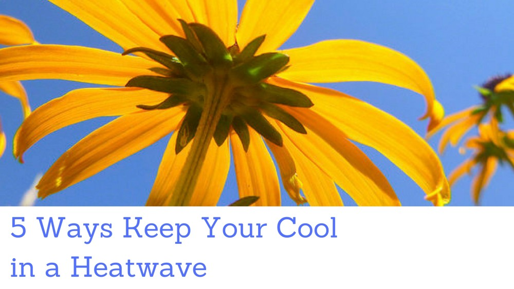 5 Ways To Keep Your Cool In A Heatwave : eMERGE Guelph
